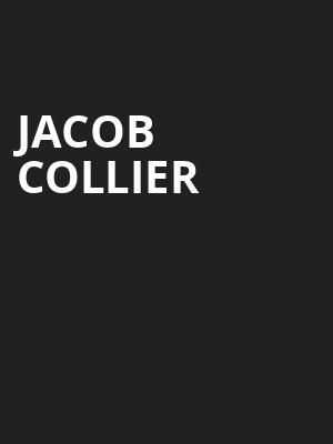 Jacob Collier Poster